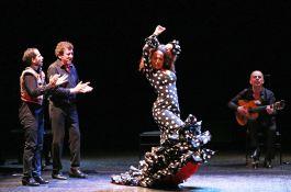 <strong>Carmen Flamenco</strong>