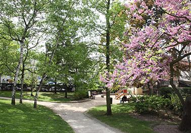 Les parcs et jardins de La Garenne sont ouverts !